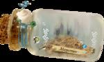 MRD_SeaMemories_bottle-memories-fish.png