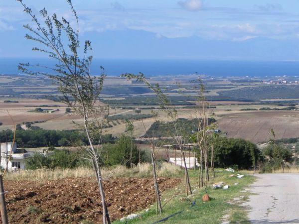 Road to Petralona