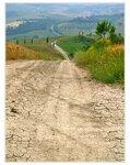 Там, за холмами Тосканы