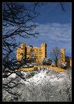 Прекрасный замок проглядывает сквозь заснеженные ветки...