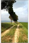 Прогуливаясь пешком по Тоскане