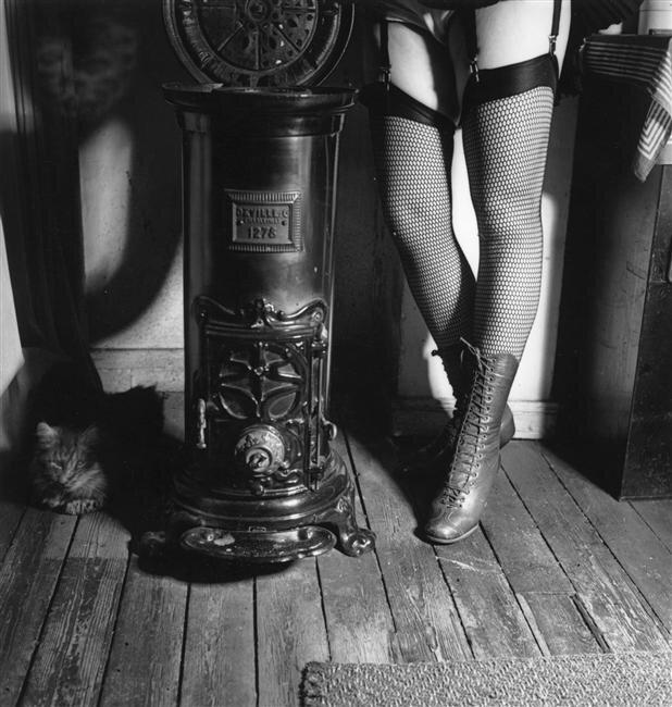 Сеточка © Marcel Bovis