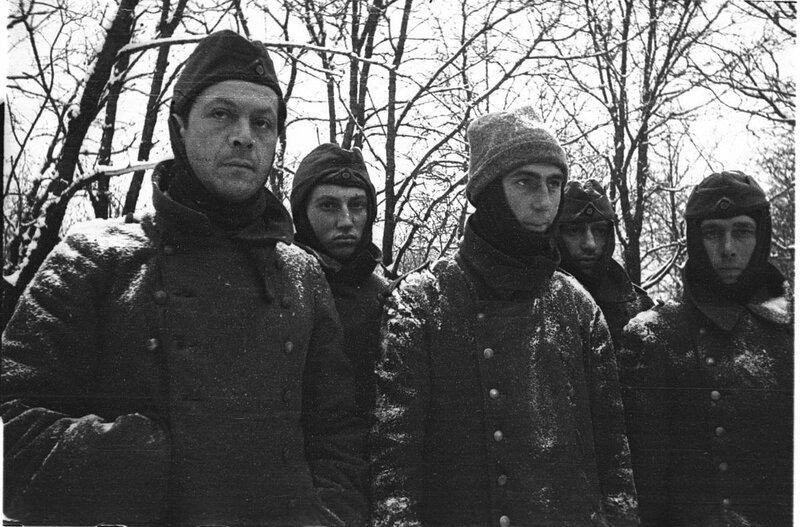 «Красная звезда», 21 февраля 1942 года, как русские немцев били, потери немцев на Восточном фронте, немецкий солдат, письма гитлеровских солдат, немцы о восточном фронте, сталинградская наука, сталинградская битва