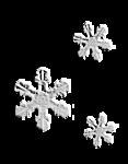 JofiaDevoe-snowflakes-white-sh.png