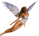 0020_angel_angelo05.png
