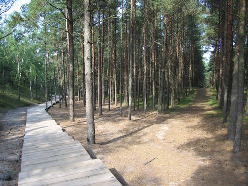 4 дня на Калининградской земле