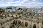 Вид с башни Хиральда на собор и Севилью