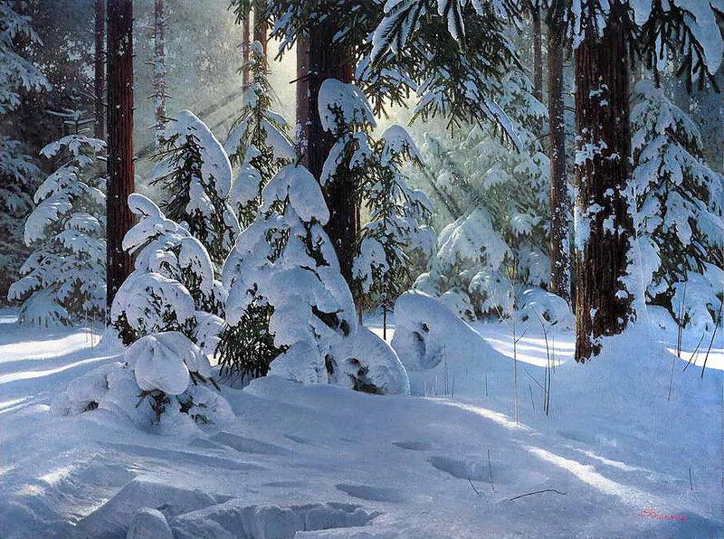 Сергей Трухан. Зимние лучи.jpg