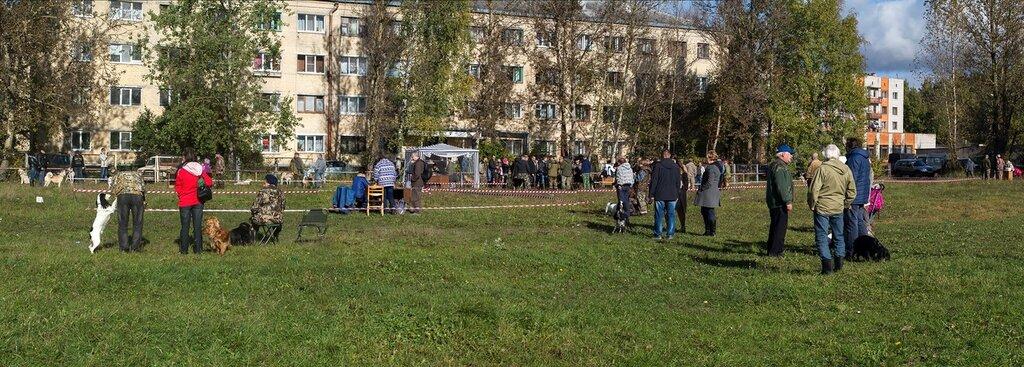 56-я Областная выставка в Пскове. 0_b2b51_ec26ab39_XXL