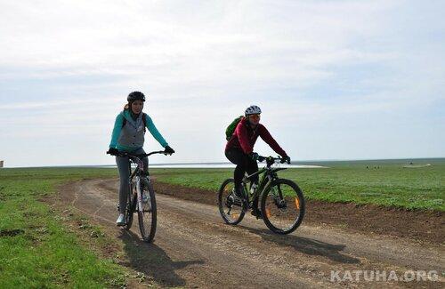 калмыкия-тюльпаны-вело