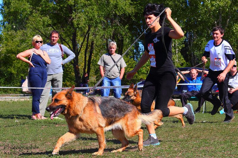 http://img-fotki.yandex.ru/get/10/49469740.3/0_16dd94_8313ce7f_XL.jpg