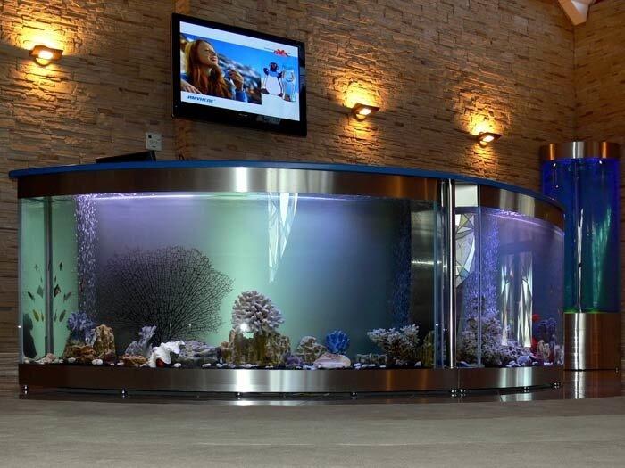 Новость компании. аквариумы и аквариумные рыбки Нептун ИП.  Салон аквариумов и аквариумных рыб поменял свое...
