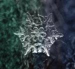 SnowFlake_5.jpg