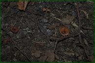 http://img-fotki.yandex.ru/get/100036/15842935.37c/0_eaaa8_b187d55f_orig.jpg