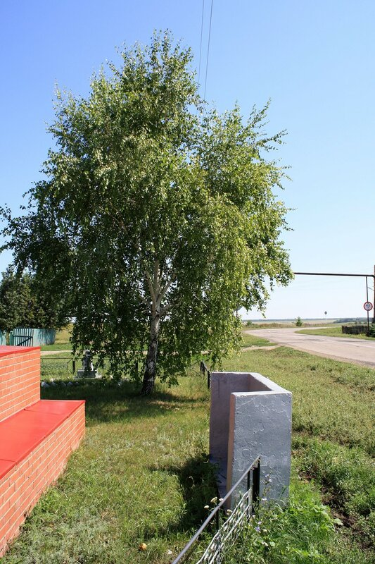 Пестравский и Безенчукский район 226.JPG