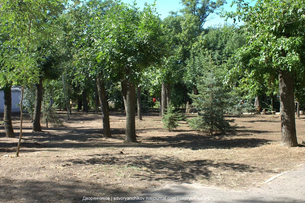 Парк ВГС - новый газон