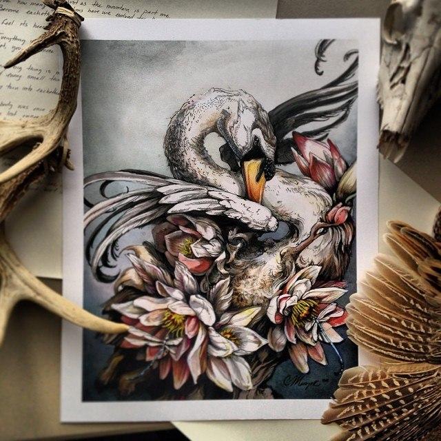 Симфония природы: рисунки Кристины Мрозик (6 фото)