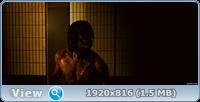 Ниндзя-убийца / Ninja Assassin (2009/BDRip/HDRip)