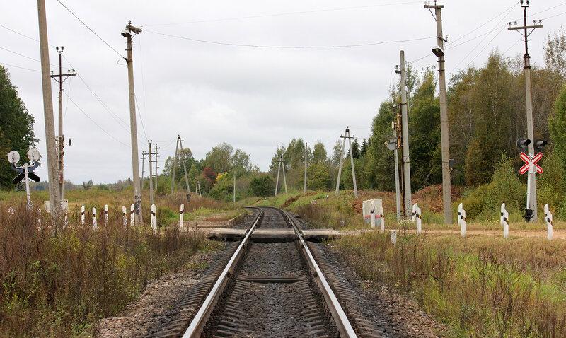 Платформа 354 км и переезд, вид на Великие Луки