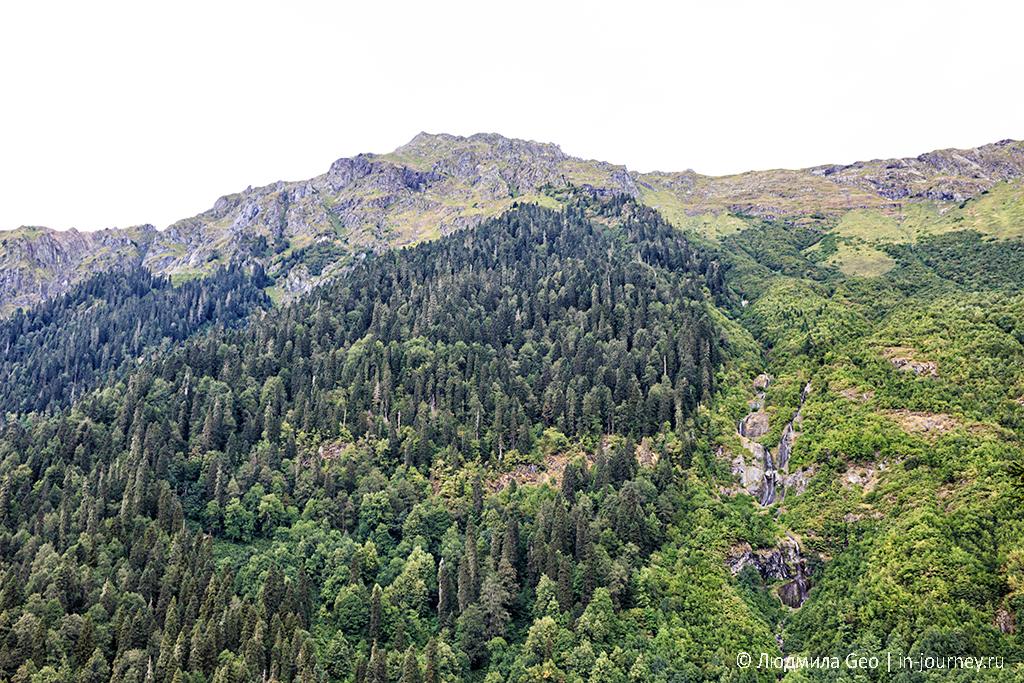 пейзаж по дороге на Альпийские луга