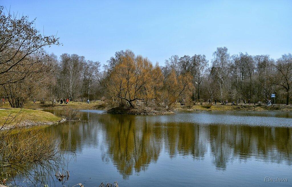 Весенний Ботанический наш сад...
