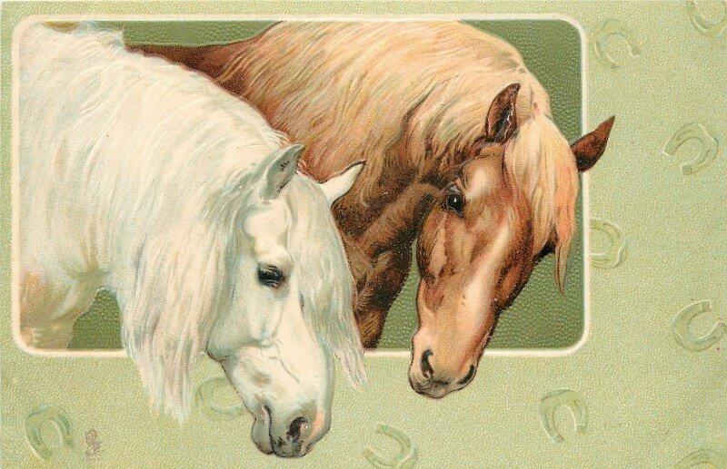 Лучшие открытки с лошадьми