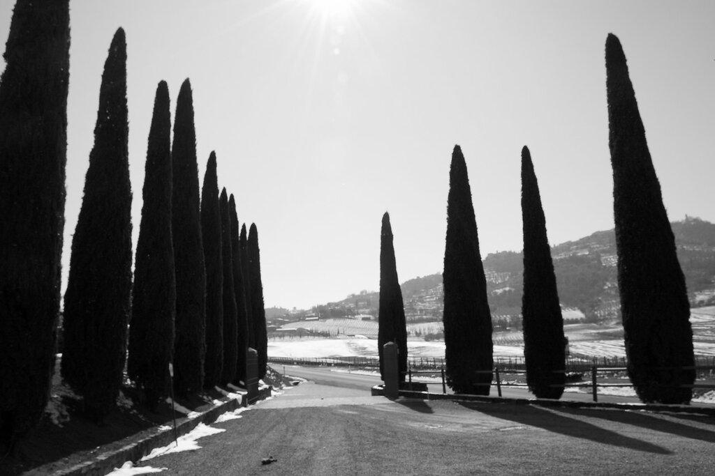 Под белым снегом Тосканы: Сиена, Греве ин Кьянти, Флоренция, Монтальчино, Пьенца и др.