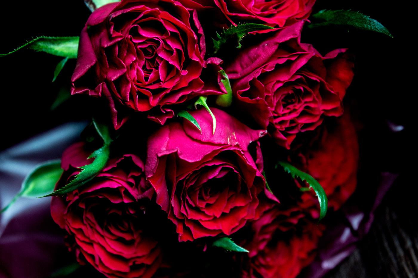 Красивые цветы / фото Sayuri Lily