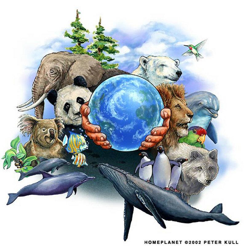 День животных картинка
