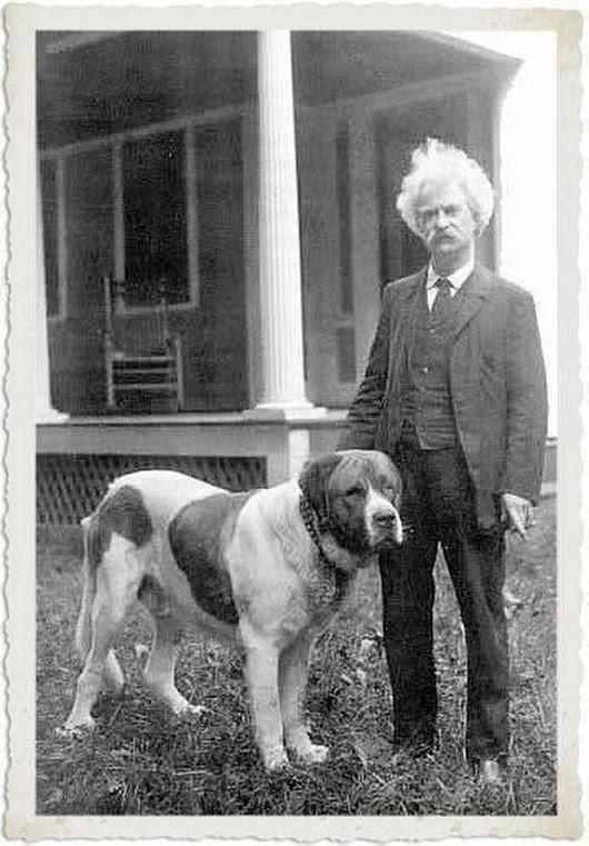 друзья собаки собаки собаки известных людей собаки людей