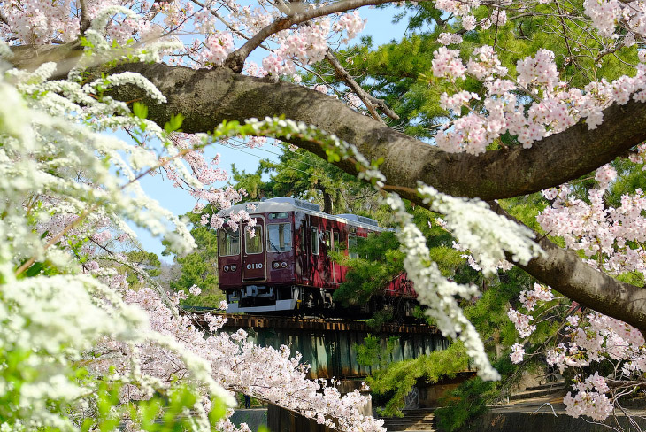 Наступила весна (19 фото)