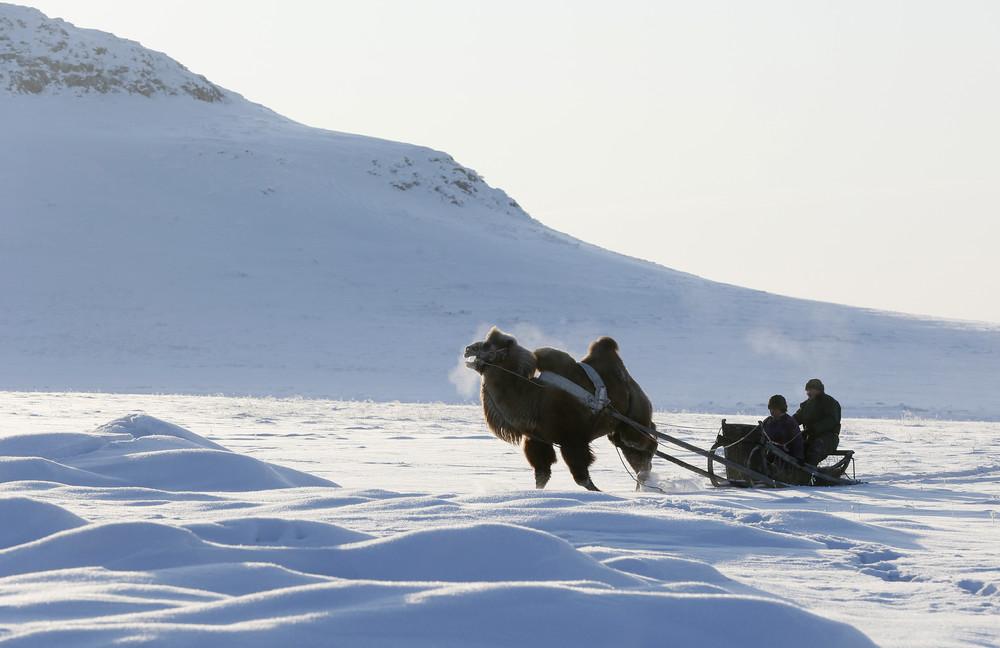 Повседневная жизнь в Сибири в фотографиях