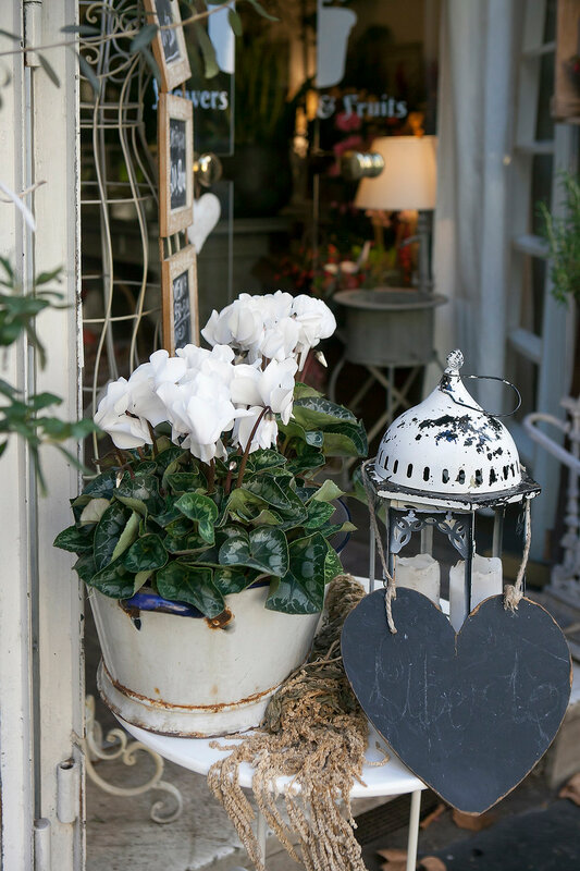 table in a street cafe is decorated with cyclamen in a pot and a lamp for Christmas