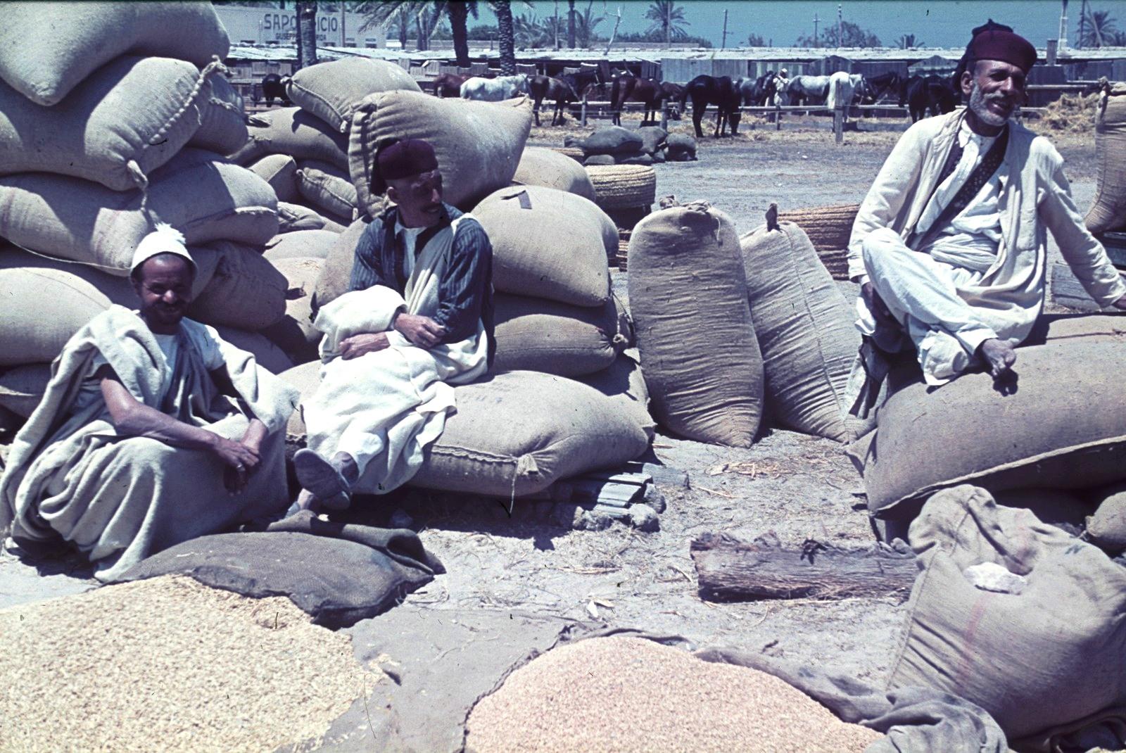 Триполи. Грузчики перед заполненными мешками во время перерыва
