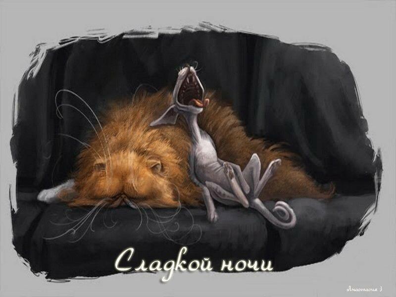 габбро-диабаз, прикольные картинки львов пожелания доброй ночи общем