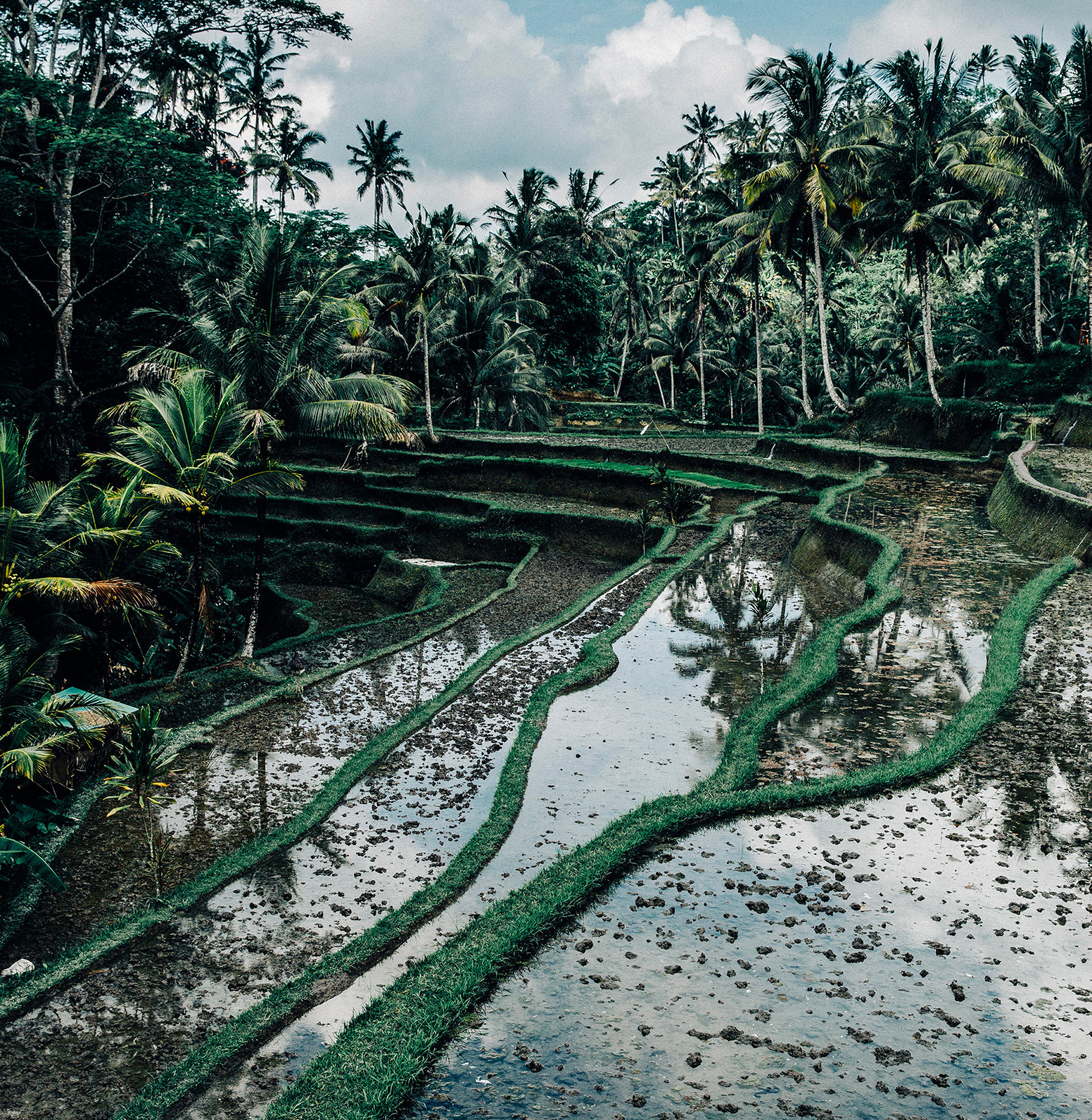Fantastic Images of a Trip Through Bali (16 pics)