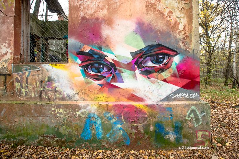 Москва. Граффити на заброшке в Измайловском парке