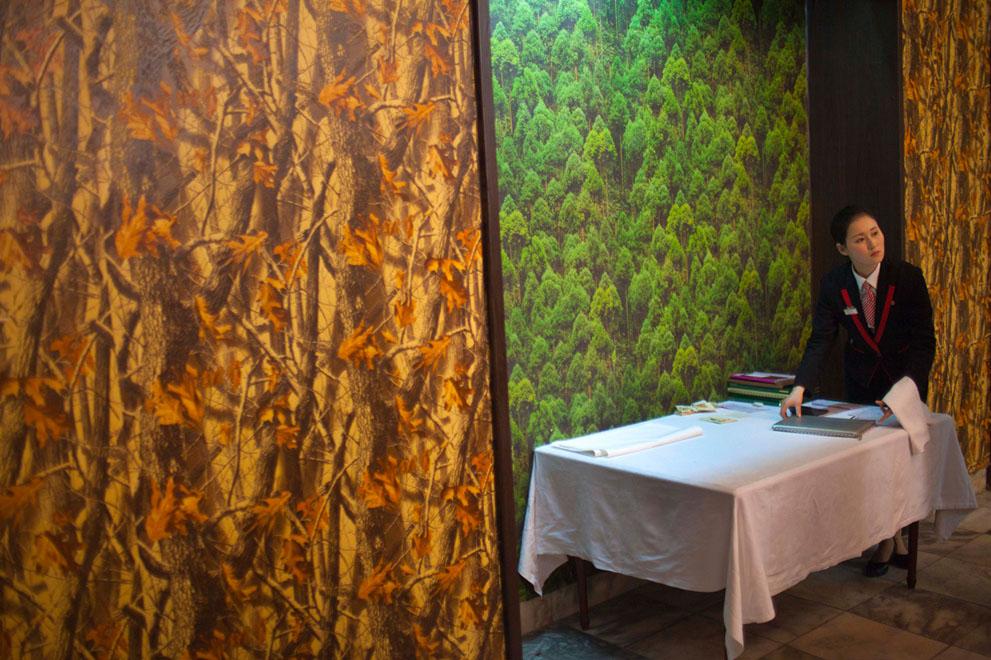 33. Официантка в ресторане с фотообоями с природными мотивами в Пхеньяне 8 декабря. (AP Photo/David