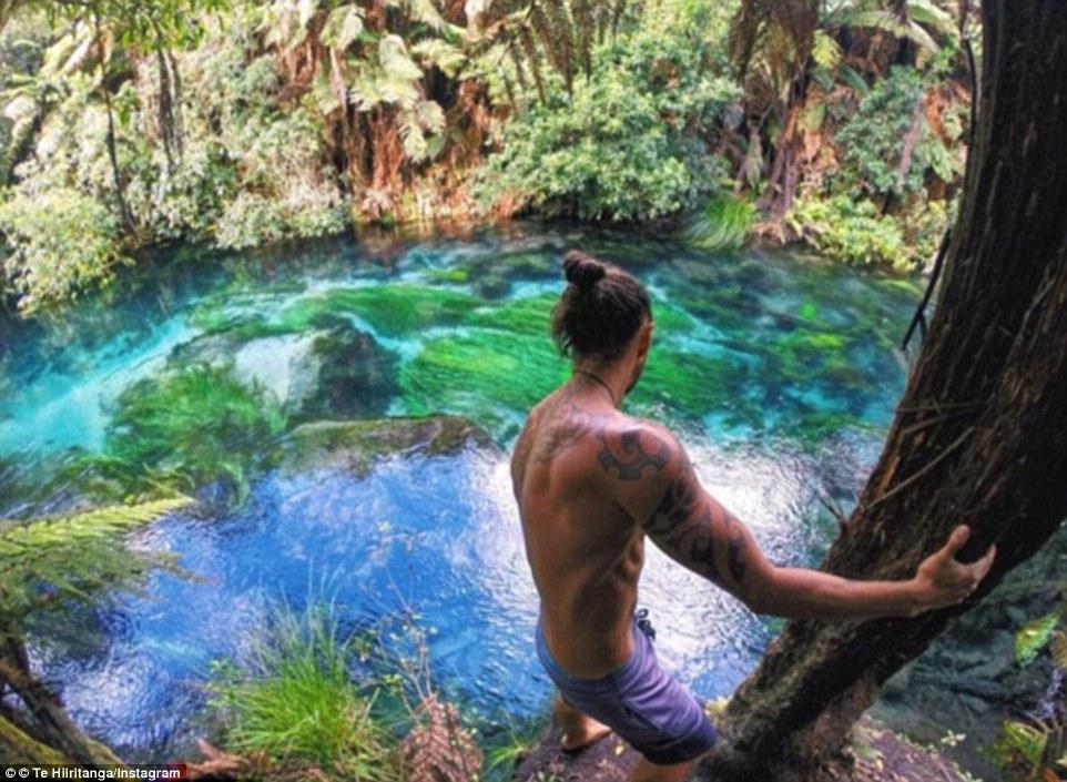 Синий источник в Путаруру, Новая Зеландия. Здесь вода фильтруется через почву на протяжении ста лет