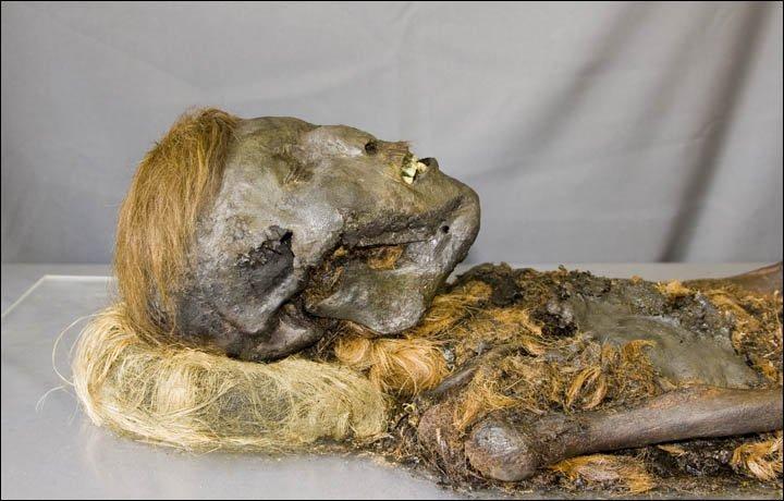 Южнокорейские ученые реконструируют лицо найденной вЯНАО мумии XIII века