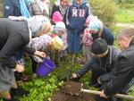18 сентября 2016 года прихожане Спасского храма Солнечногорска с большой радостью приняли активное участие в благом деле - акции Наш лес. Посади свое дерево