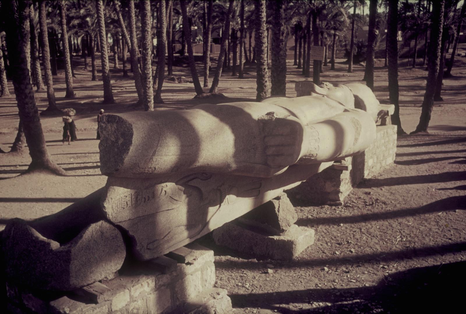 Мемфис. Гигантская статуя Рамсеса II