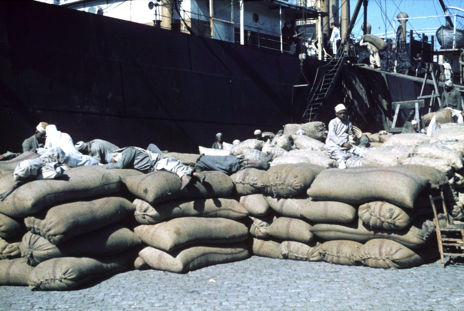 Александрия. Порт. Погрузка товара на судно