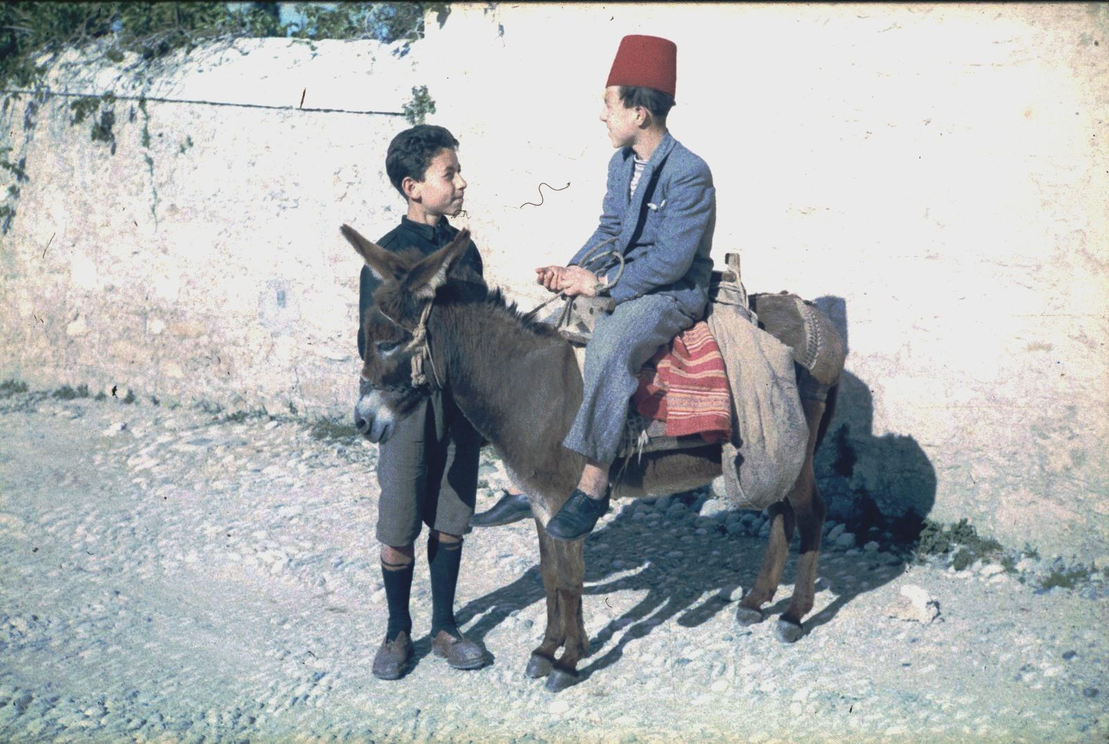 Два мальчика с ослом