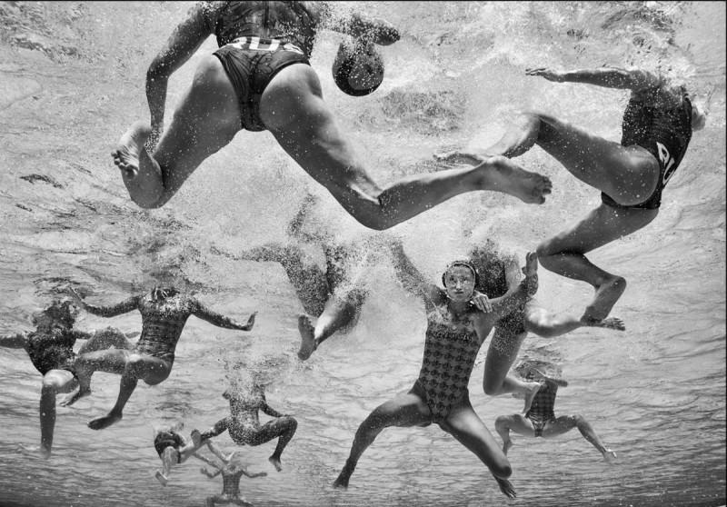 Sony конкурс лучшие работы финалисты фотографии