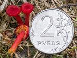 https://img-fotki.yandex.ru/get/1003883/37421374.383/0_d19a3_5d51e74c_S.jpg