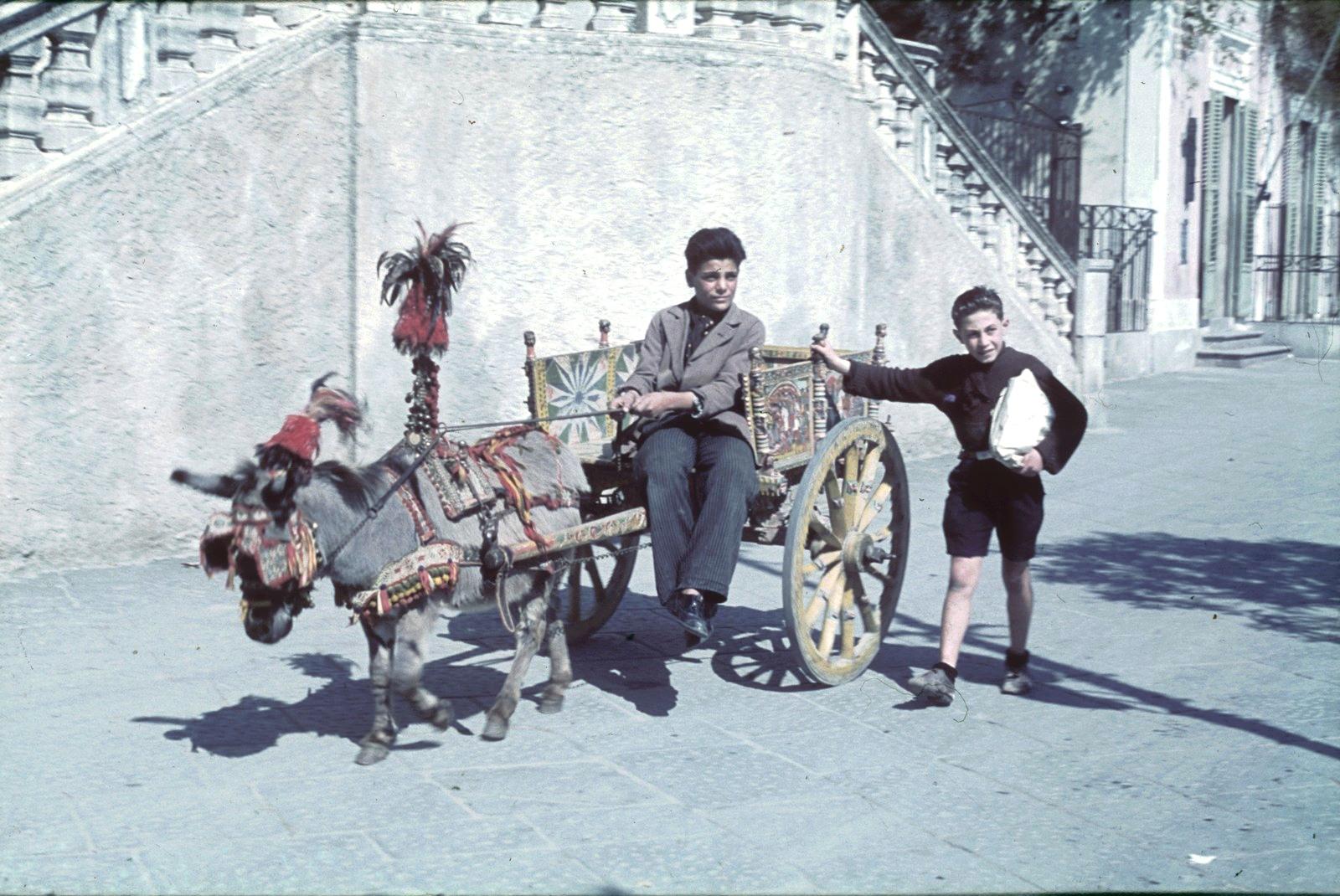 Таормина. Два мальчика с в запряженной телеге