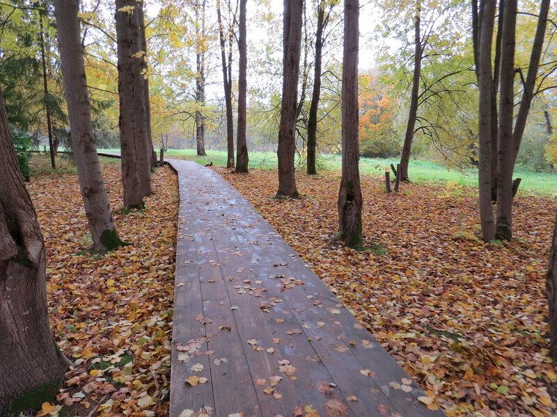 Деревянная дорога в Витославлицах