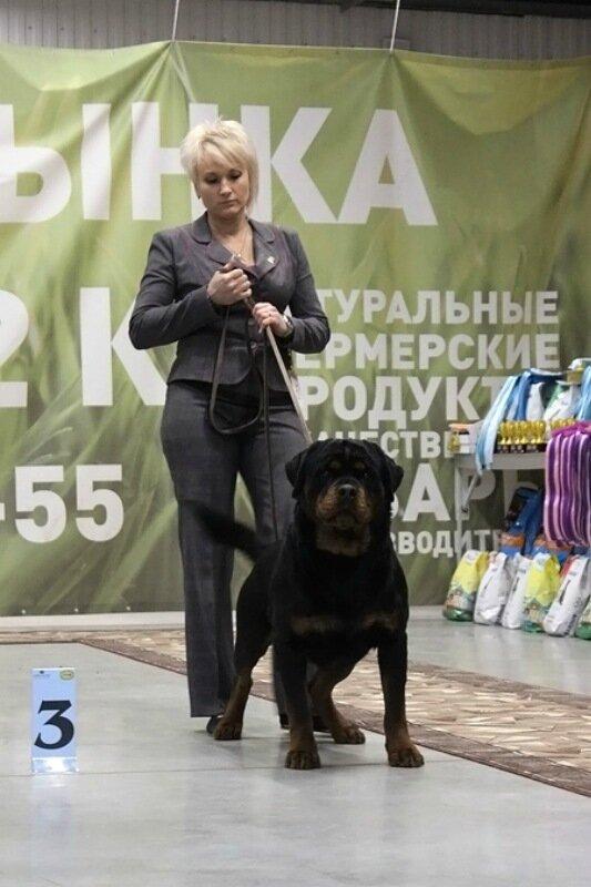 https://img-fotki.yandex.ru/get/1003890/225487091.c6/0_17c555_814c01f6_XL.jpg