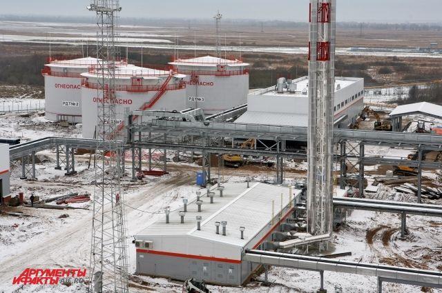 Путин запустил две новые электростанции под Калининградом